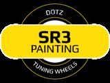 SR3 Painting